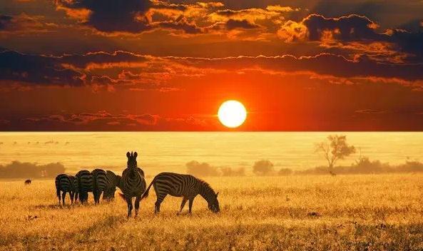 非洲——钻石的故乡